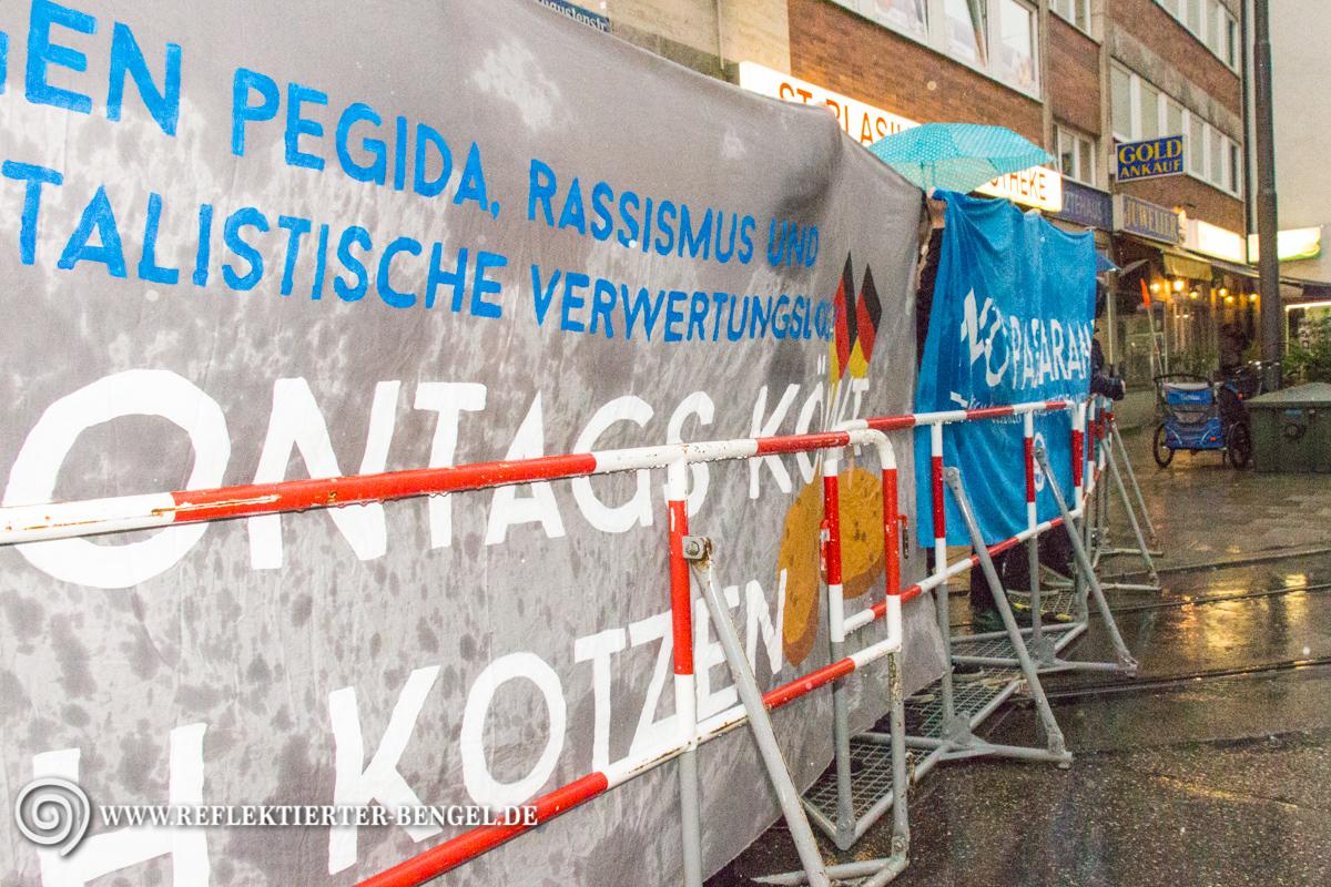 08.06.15 München - Pegida München