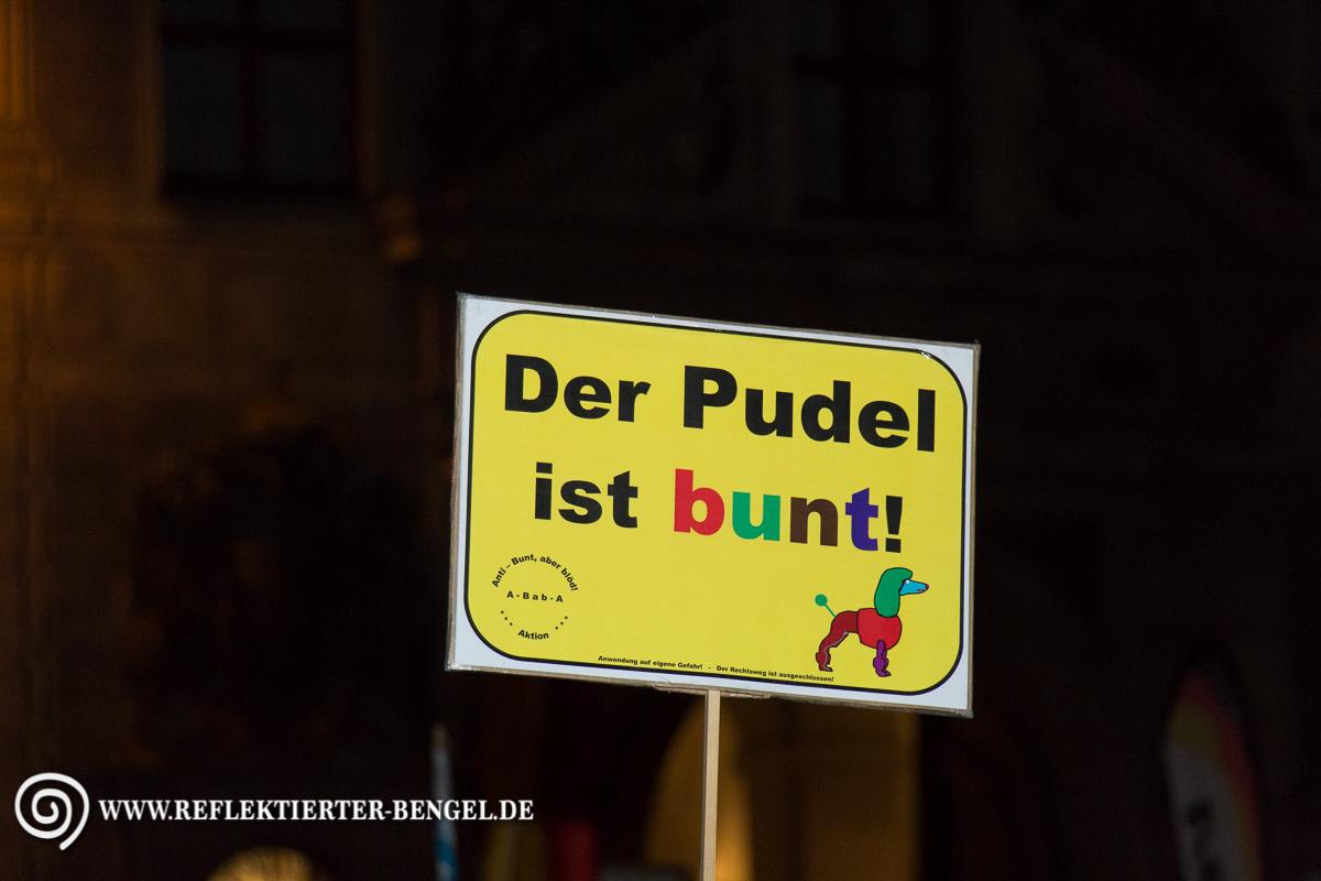 05.10.15 München - Pegida München