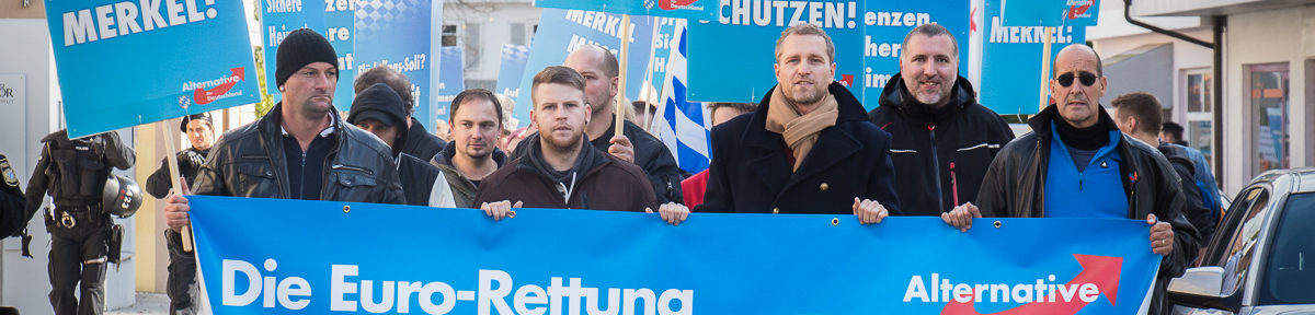 AfD demonstriert durch Freilassing